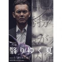 翳りゆく夏 DVD-BOX